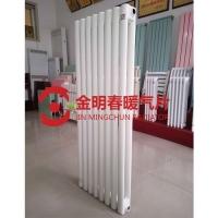 扁管钢制二柱散热器-耐腐蚀钢制暖气片-生产厂家