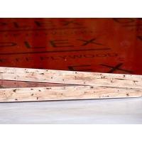 橋梁竹膠板,房建竹膠板