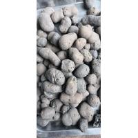 陶粒直销建筑陶粒回填陶粒
