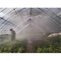 园林绿化雾喷冷雾系统工程工厂直接承包安装