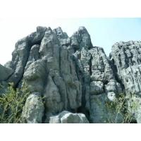 天津生态园假山施工制作