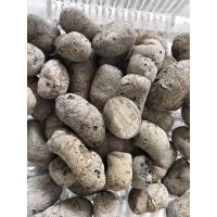 園藝綠化陶粒用多大規格的