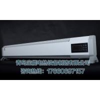 踢脚线式取暖器高温辐射电暖器电热幕