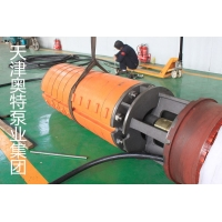 6715X系列双吸式无轴向力铁矿透水潜水泵