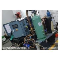 100p低温螺杆式冷水机