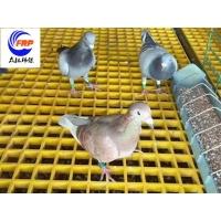 养殖场格栅 养鸽场专用格栅 新型漏粪格栅板