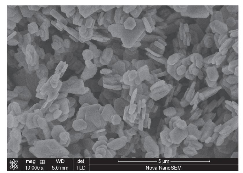 雅宝替代品ESTONE  MGH-15高纯六角片氢氧化镁