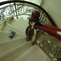 五常市欧式别墅选购铜艺铝艺雕花楼梯扶手