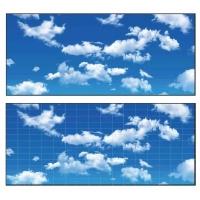 恒大游泳池專用藍天白云3D彩繪鋁單板