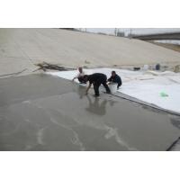 聚合物防水砂浆快速修补价低质量保证