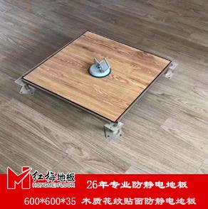 黄南2020木纹防静电地板价格 全钢防静电地板报价 红梅地板
