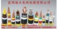 海天電纜,電線電纜,昆明電纜,多寶電纜,云南電纜,家裝電線