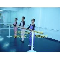 舞蹈/实验室/学校专业地胶价格