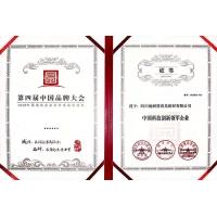 中国科技创新领军企业