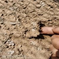 煤炭抑尘剂道路液体封尘剂 运输专用建筑工地固沙剂