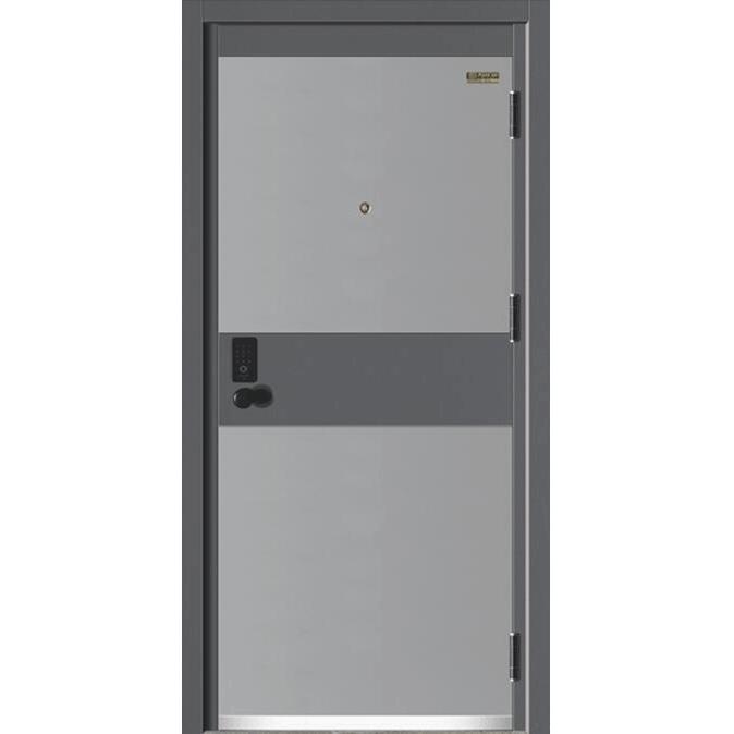 梦幻星空J221A-10公分甲级智能防盗门