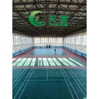 運動地膠價格/運動地板報價/沈陽天韻塑膠地板產品庫