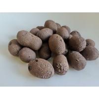 建筑陶粒 回填陶粒 污水处理陶粒 保温陶粒