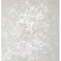 柏恩仕艺术涂料—3D银箔