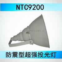 金卤灯投光灯 NTC9200-J1000W 海洋王MH气体放