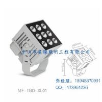 LED投光灯户外防水 罗马柱建筑外墙投射灯 远射程广场廊柱灯