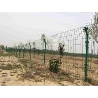 河南果园圈地护栏网 散养鸡防护网 镀锌电焊网隔离栅