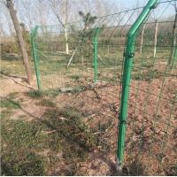 圈地工地場地護欄網 光伏區場地圍欄養殖場果園防護網