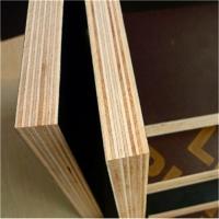 通化建筑模板 通化木模板 通化竹胶板