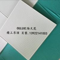 【歐陸天花】OULU幕墻集成吊頂600*600微孔鋁扣板