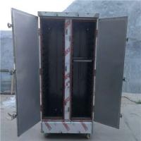 豎盤擺放36盤雙門蒸飯柜 亳州電蒸汽兩用蒸箱 不銹鋼蒸車優惠