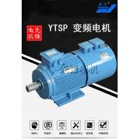 盛灵YTSP变频电机