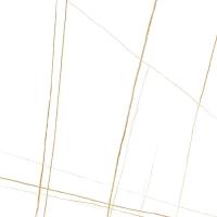 创屋岩板 劳伦特白金(柔哑面) 61M066-CY15XB