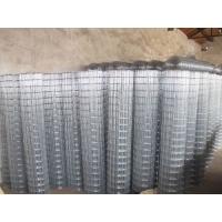 电焊网片镀锌电焊网内墙保温网养鸡厂围栏网