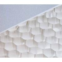 长沙铝蜂窝板,长沙铝蜂窝板价格,长沙铝蜂窝板厂家