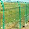 蔥綠果園防護雙邊圍欄A巴楚蔥綠果園雙邊圍欄廠家