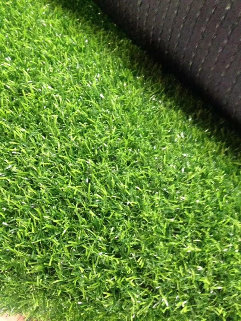 雷竞技竞猜草坪生产厂家,仿真草坪雷竞技注册,尤加利草坪