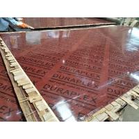 湖南竹膠板  一級橋梁竹膠板  橋梁板 清水模板