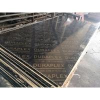 清水模板  清水模板厂家  覆膜板  黑板
