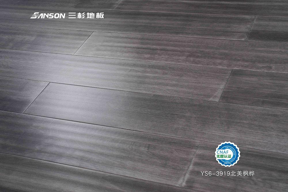 YS6-3919北美枫桦