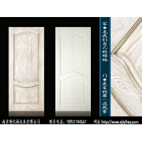 南京木门TYF_190112烤漆木门