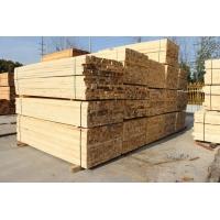 上海木方铁杉价格铁杉批发市场