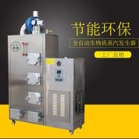 旭恩100KG生物质蒸汽发生器