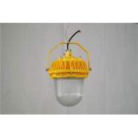 50w防爆灯吊装壁装 LED防爆照明灯