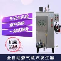 广东蒸汽发生器高节能全自动电加热工业锅炉