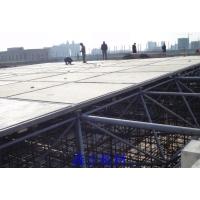 黑龍江高強度鋼骨架輕型板,哈爾濱鋼骨架輕型板