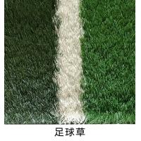 贯美供应人造草坪 人造塑料草坪 人造仿真草坪