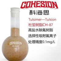 杜笙树脂CH-87矿井水氟化物超标处理含氟废水处理