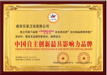 中国自主创新最具影响力品牌