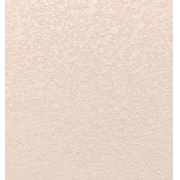 弹涂硅藻泥系列 单色弹涂