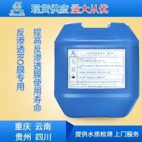 貴州MZG-380阻垢劑/反滲透膜阻垢/反滲透阻垢劑生產